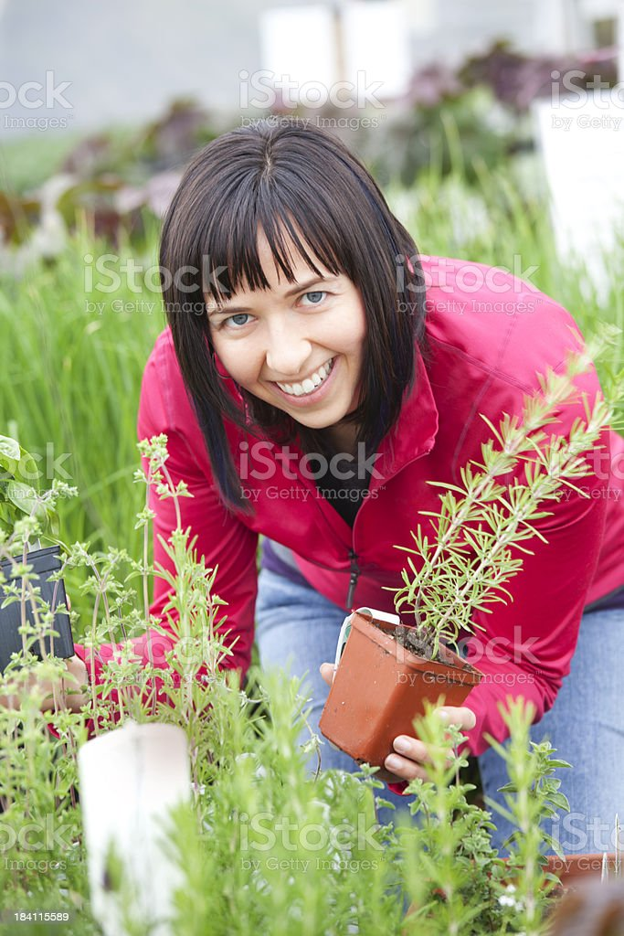 Woman in Greenhouse royalty-free stock photo