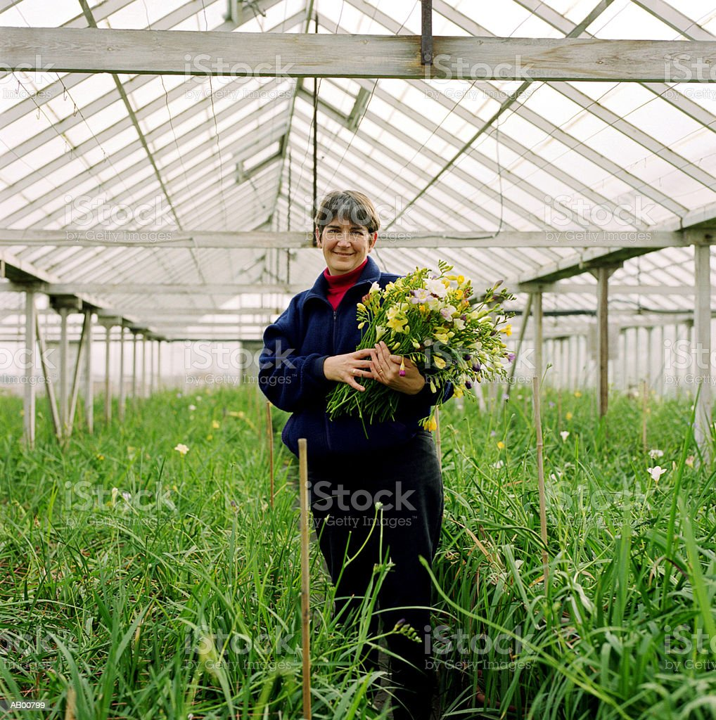Woman in greenhouse stock photo