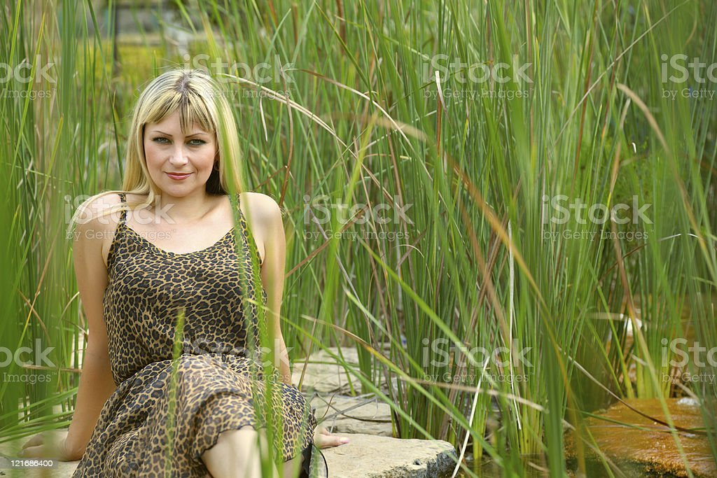 Woman in leopard summer dress sits amidst reed stock photo
