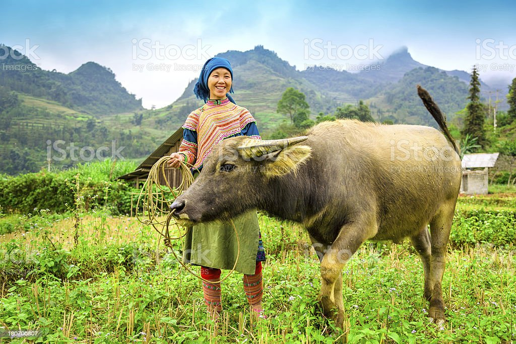 Woman in North Vietnam royalty-free stock photo