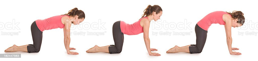 A woman in pink doing the cat pose royalty-free stock photo