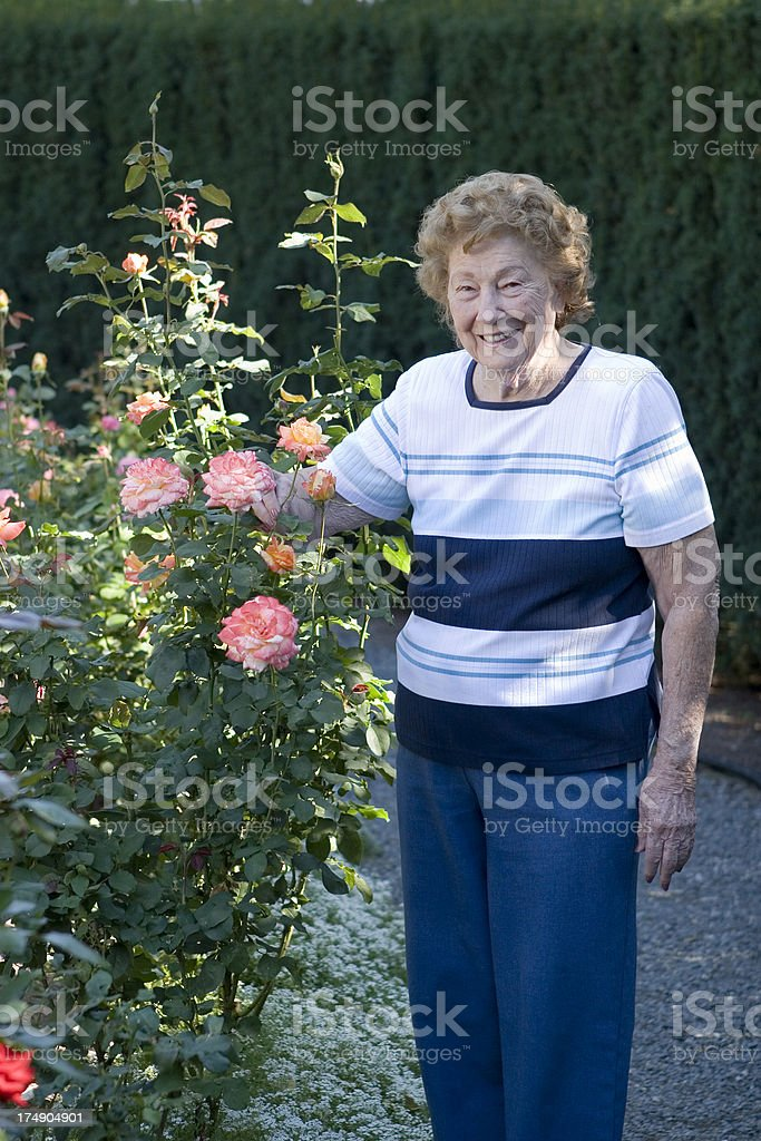 Woman in rose garden stock photo