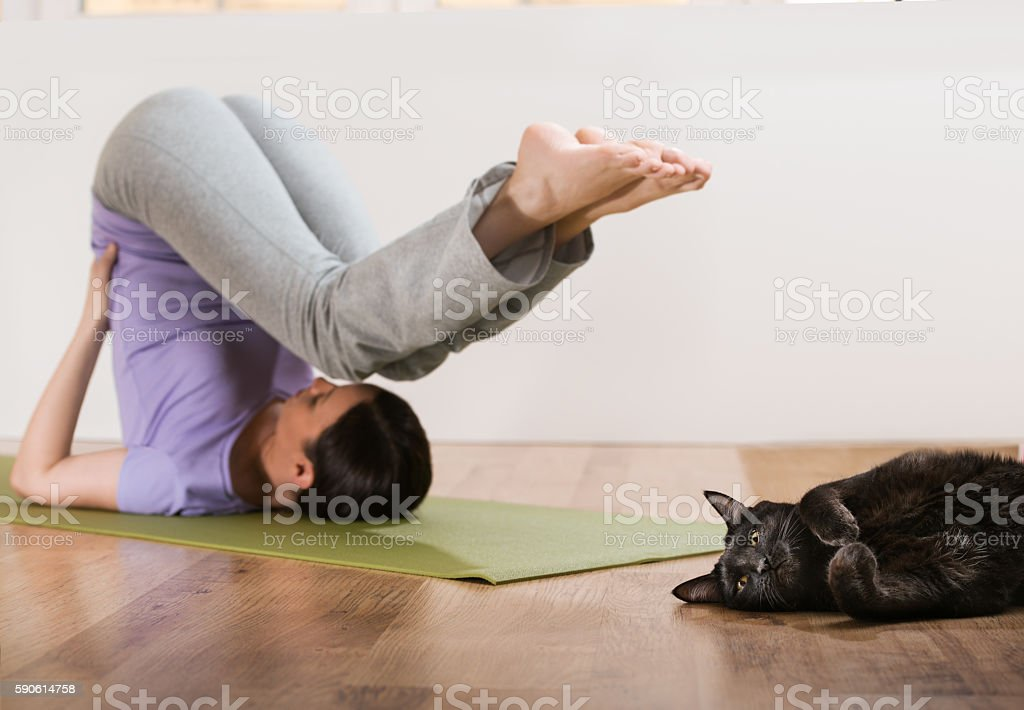 Woman in stretching yoga pose at home with her cat stock photo