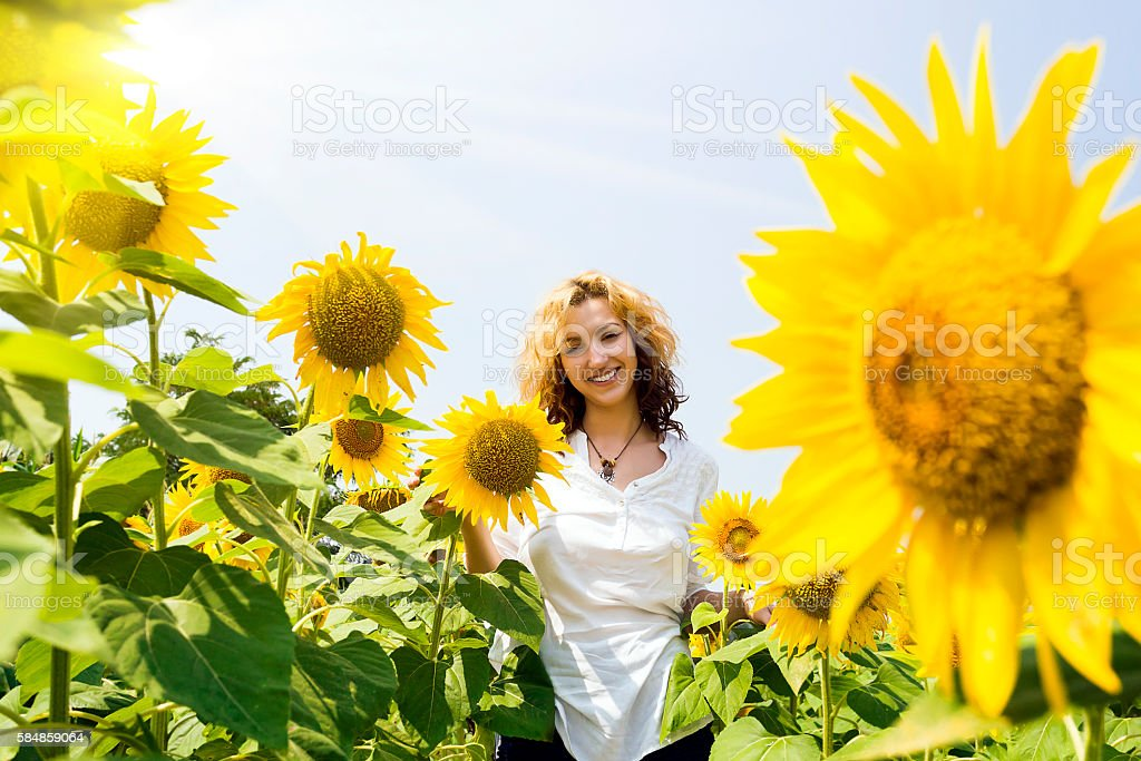 Woman in sunflower fields stock photo