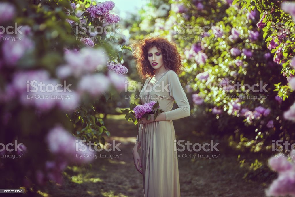 Woman in the alley of lilac bushes in the garden. stock photo