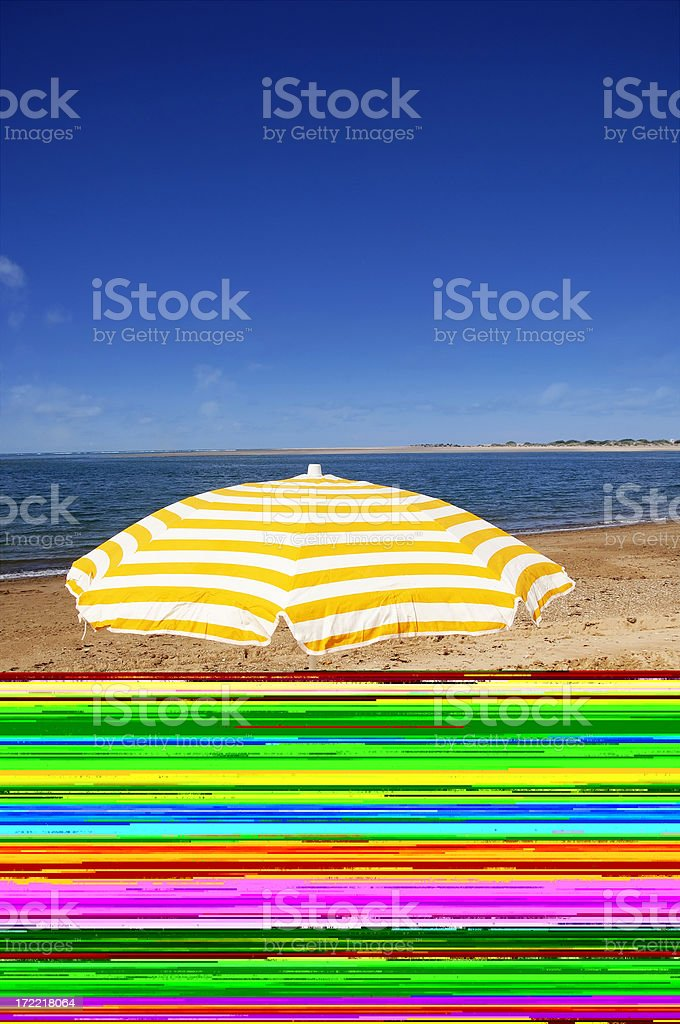 Woman in the beach royalty-free stock photo