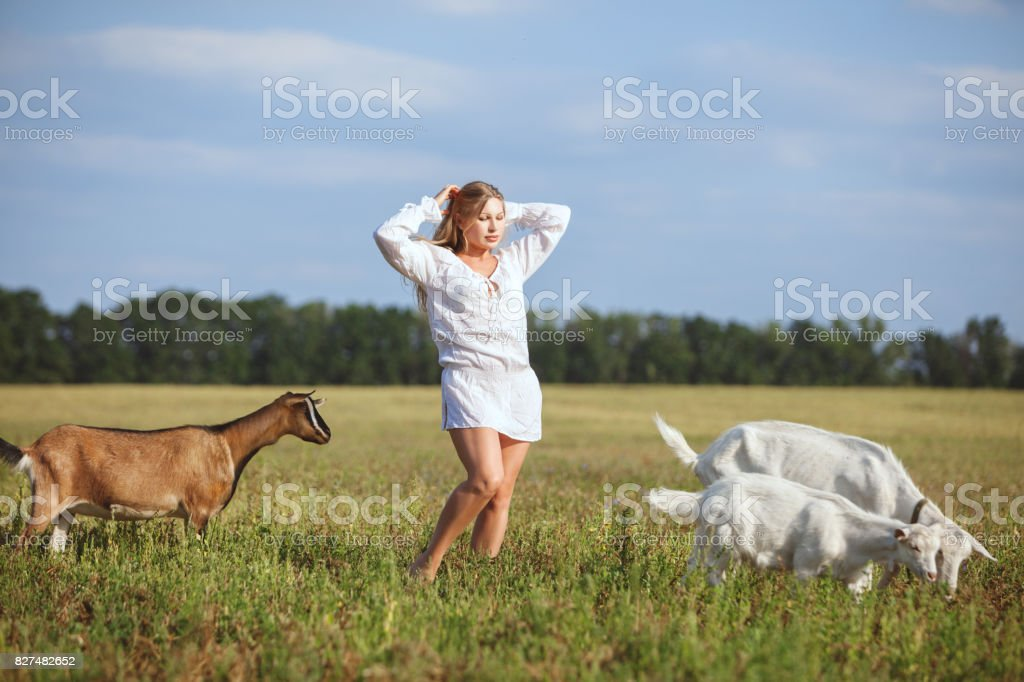 Woman in the field with pets. stock photo