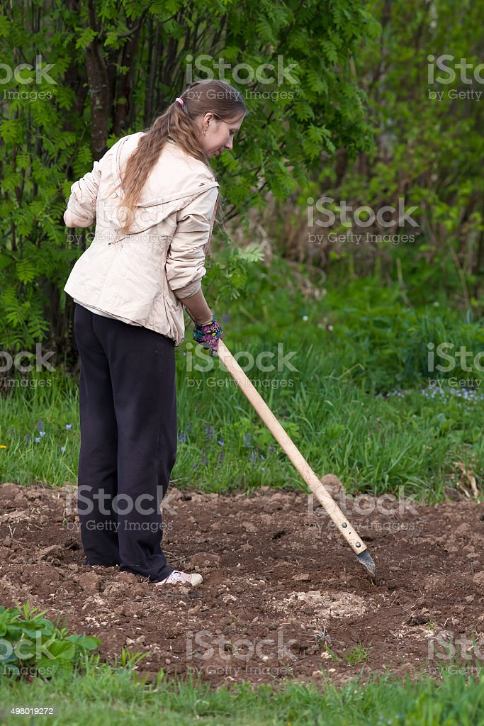 woman in the garden stock photo