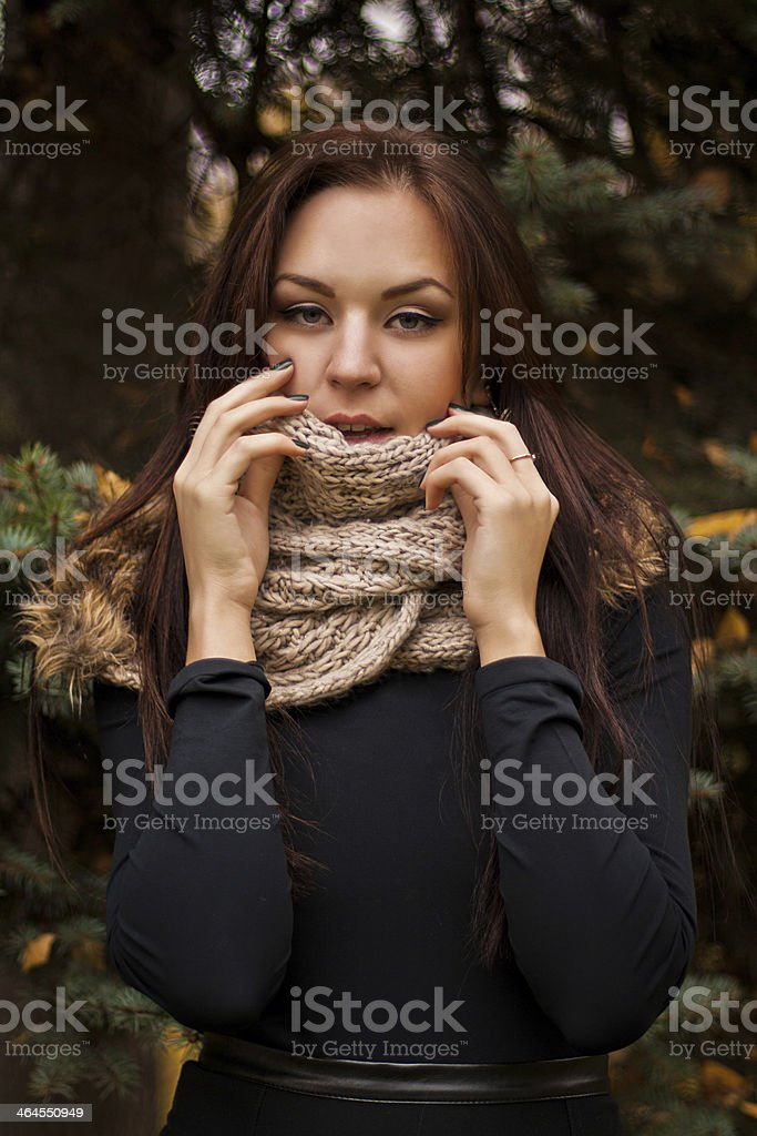 Woman  in the warm scarf stock photo