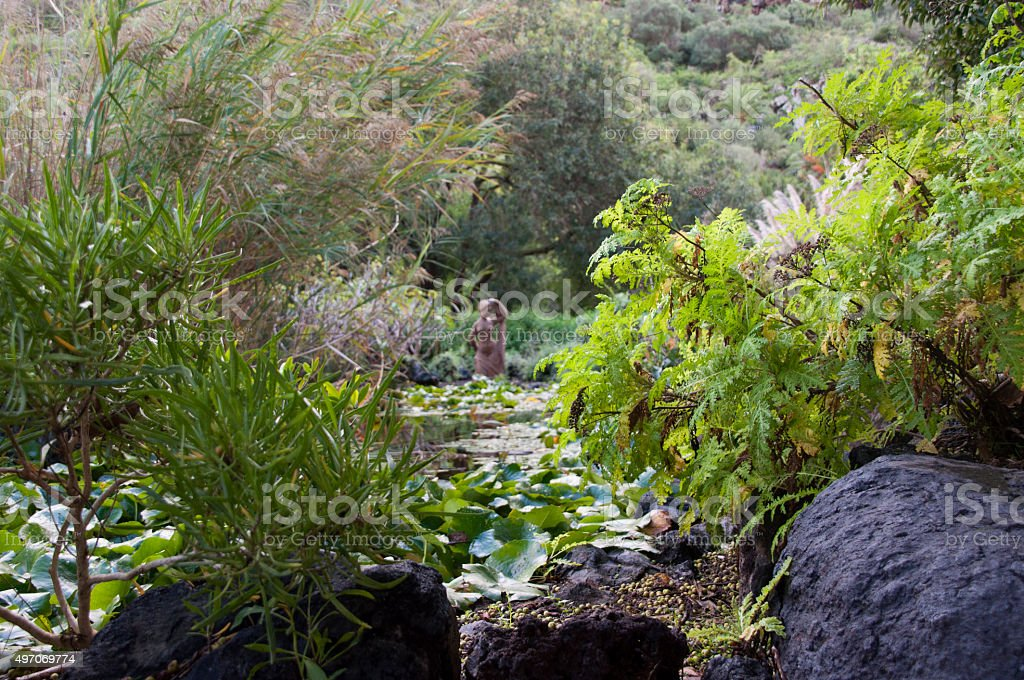 Woman in the Water stock photo