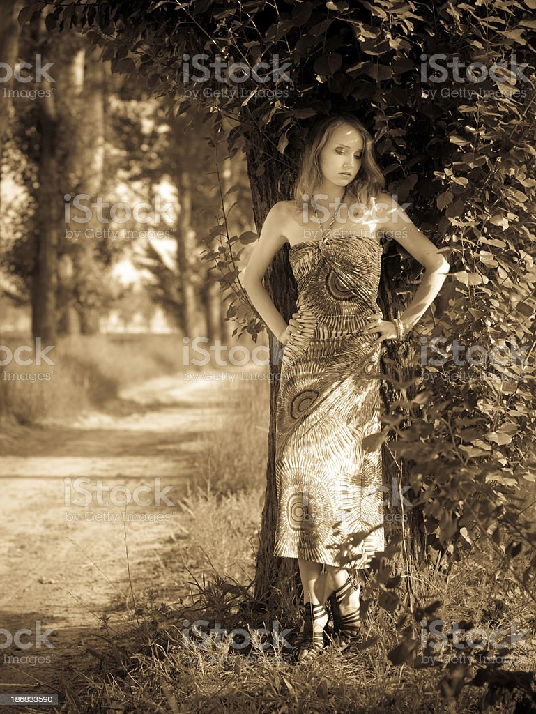 Woman in the woods stock photo