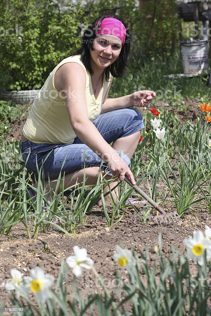 Woman in vegetable garden royalty-free stock photo