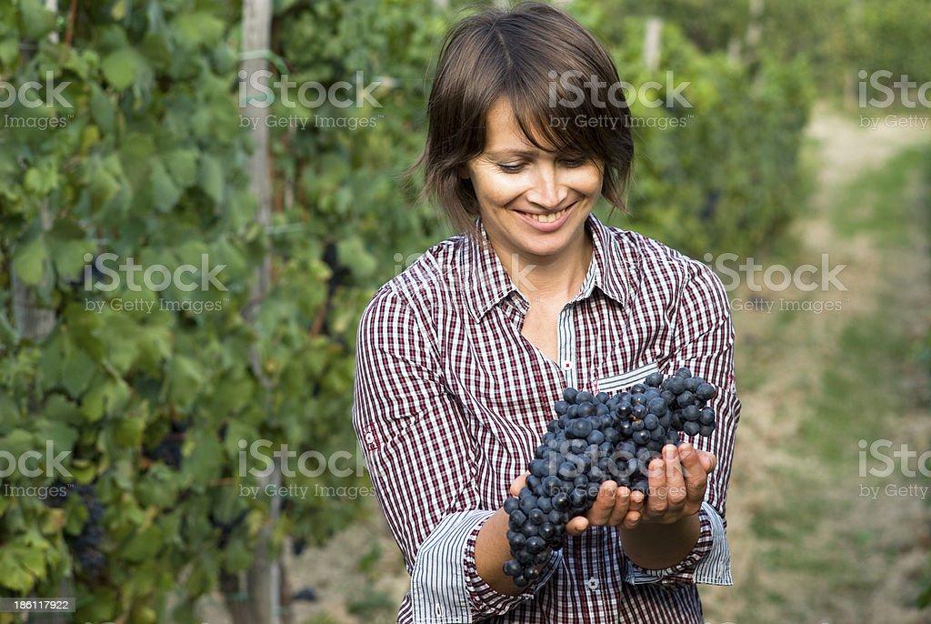Woman in vineyard stock photo