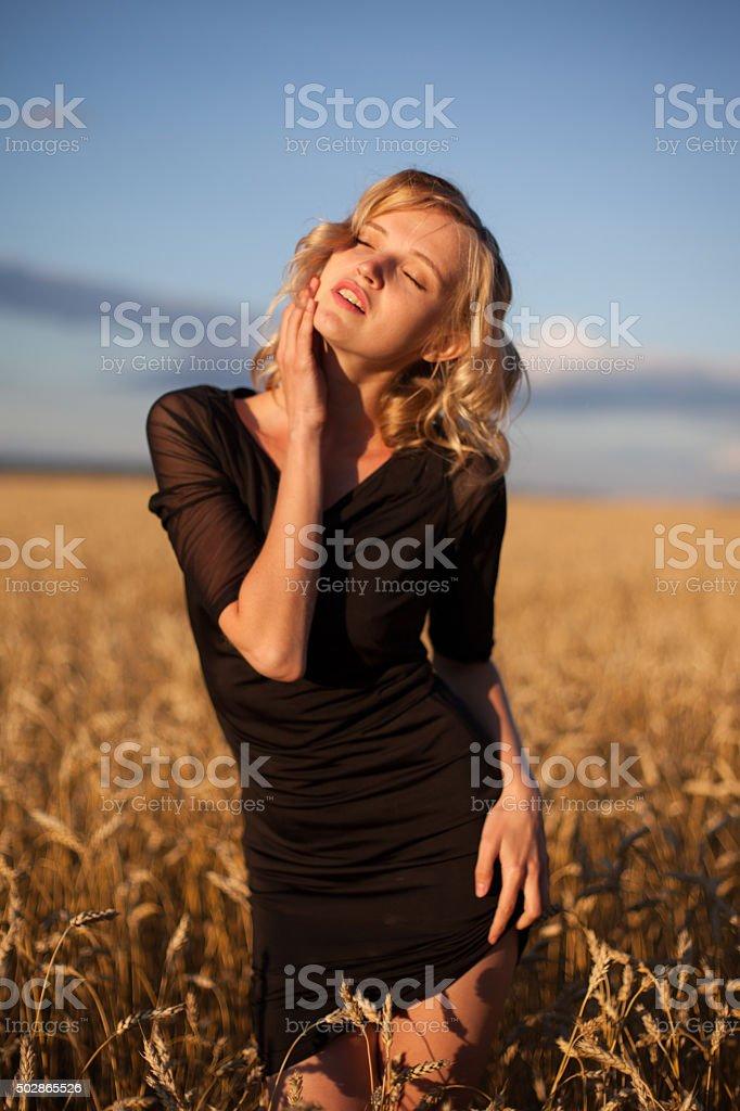 Woman in wheat field under blue sky stock photo