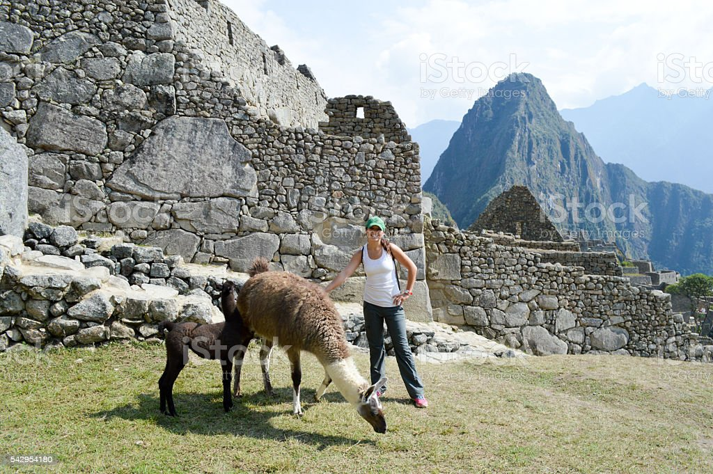 Woman interacting with llama at Machu Picchu stock photo