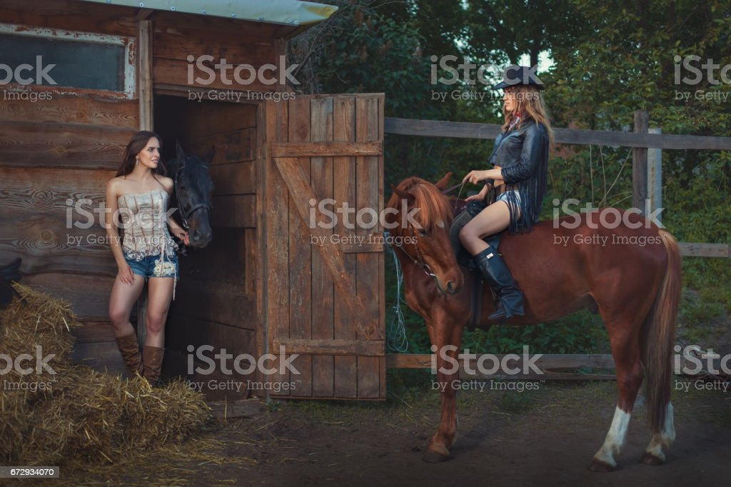 Woman is riding a horse. stock photo