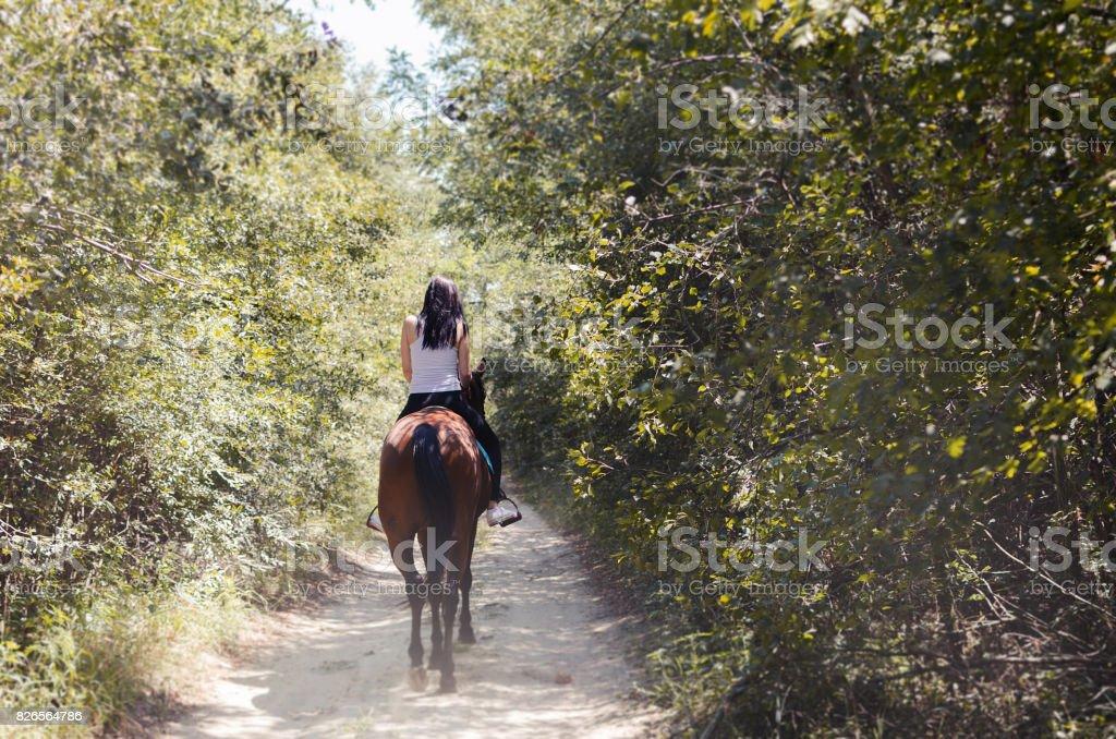 woman jockey sitting on the horse stock photo