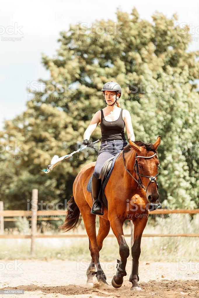 Woman jockey training riding horse. Sport activity stock photo