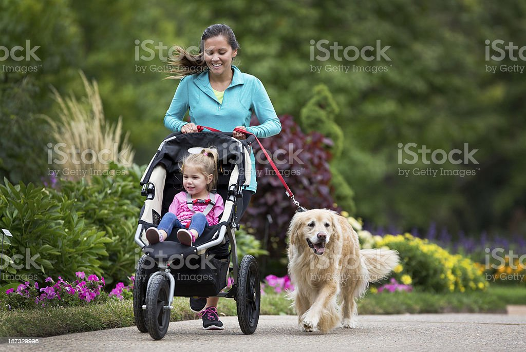 A woman jogging holding a dog on a lead and pushing a buggy stock photo