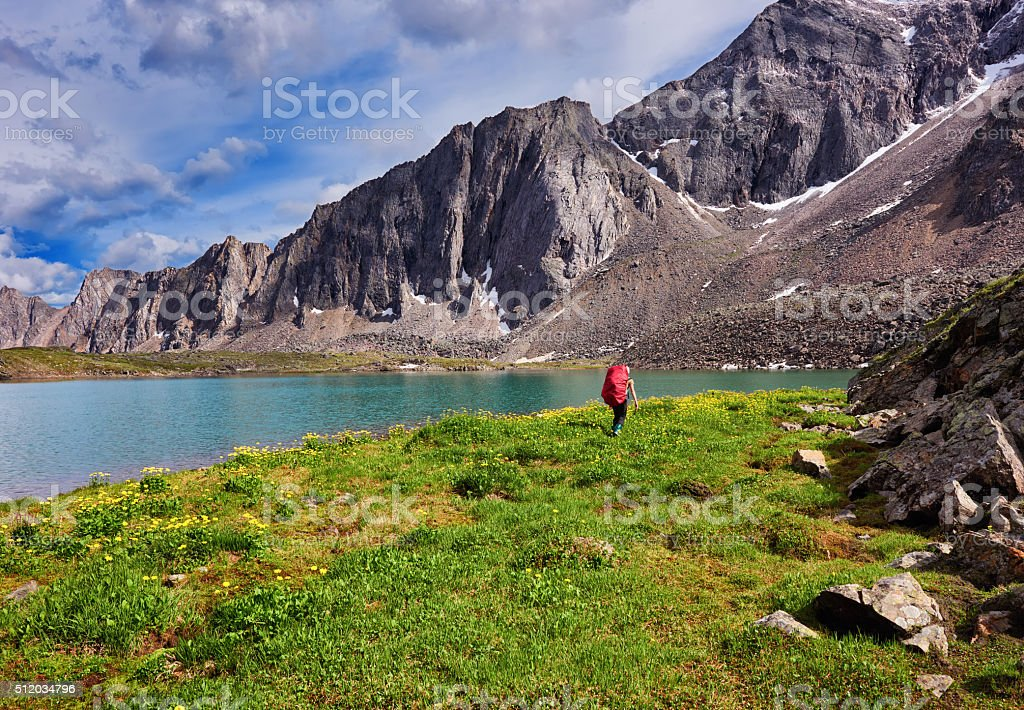 Woman leaves on the background of wild nature stock photo