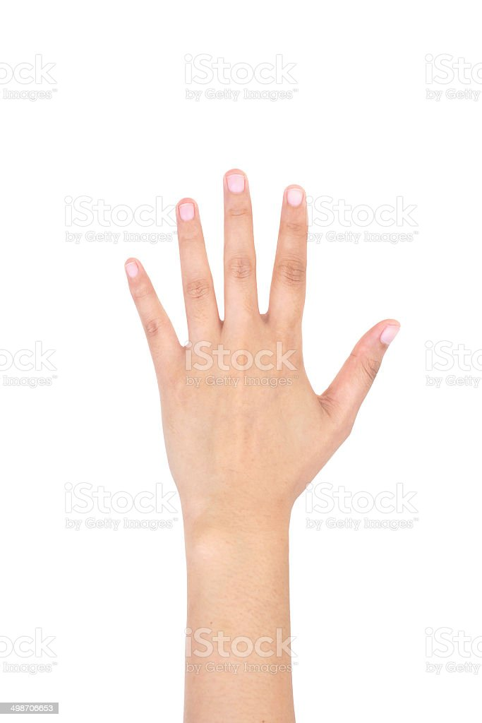 Woman left hand showing the five fingers isolated. stock photo