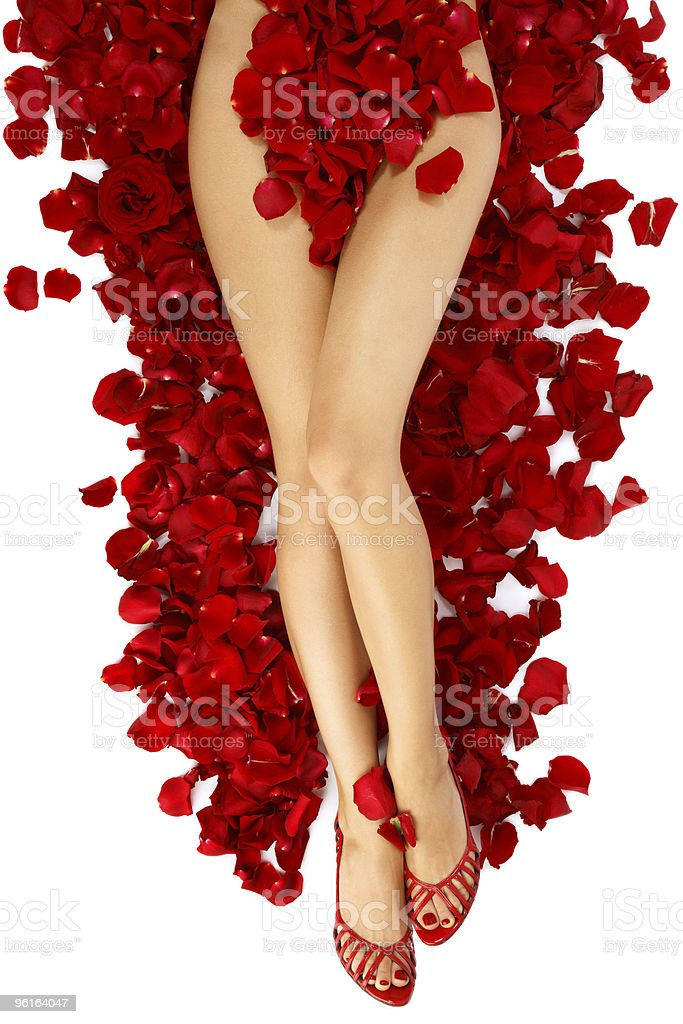 Woman legs on rose petals royalty-free stock photo