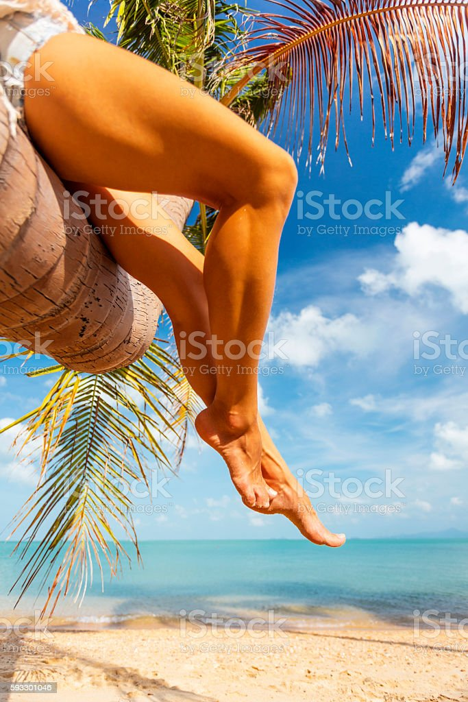woman legs on tropical back stock photo