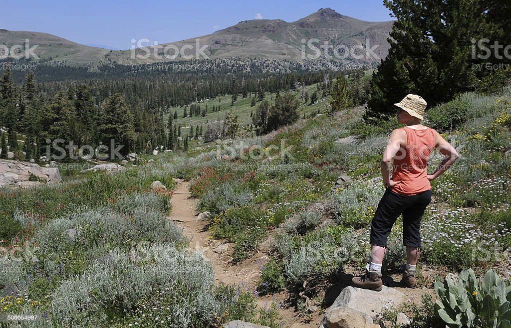 Woman Looking Out to the Wilderness royalty-free stock photo