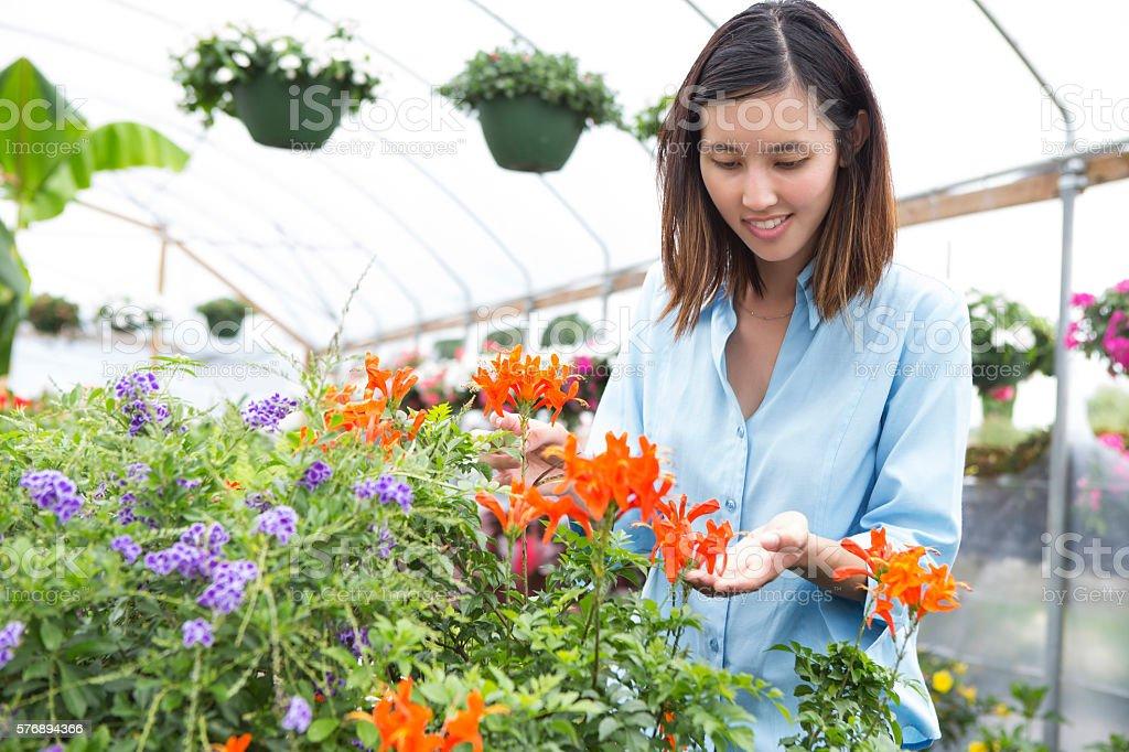 Woman looks at beautiful flowers stock photo