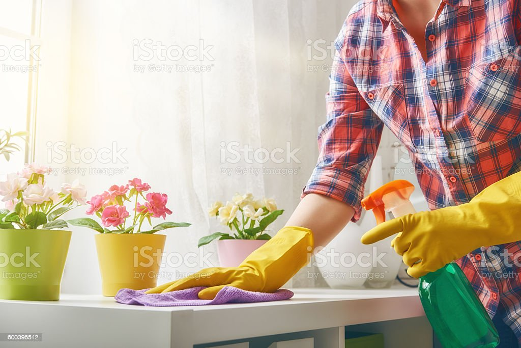 woman makes cleaning stock photo