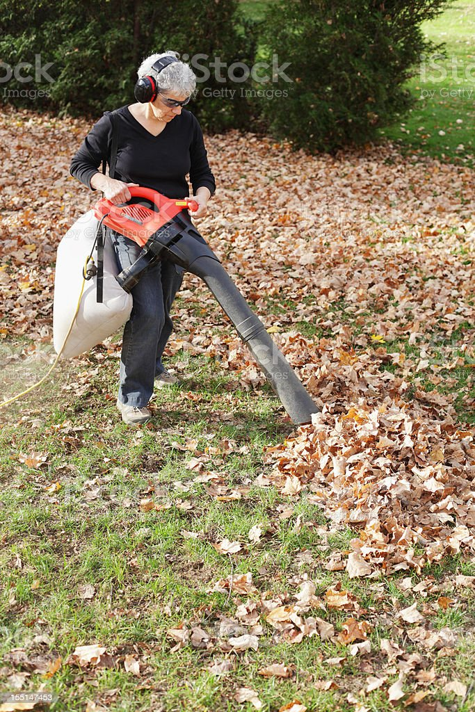 Woman Mulching Autumn Leaves stock photo