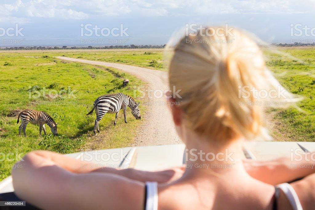 Woman on african wildlife safari. stock photo