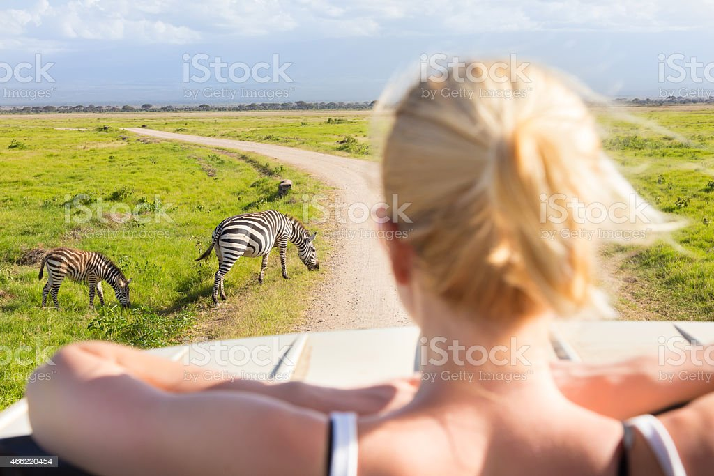 Woman on african wildlife safari. stock photo