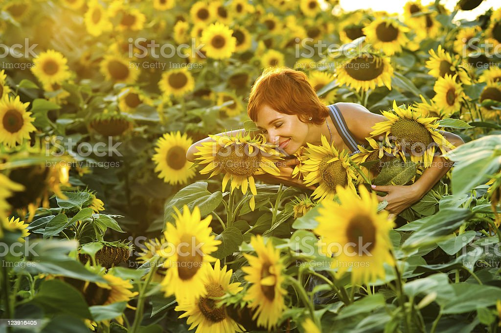 woman on blooming sunflower field royalty-free stock photo