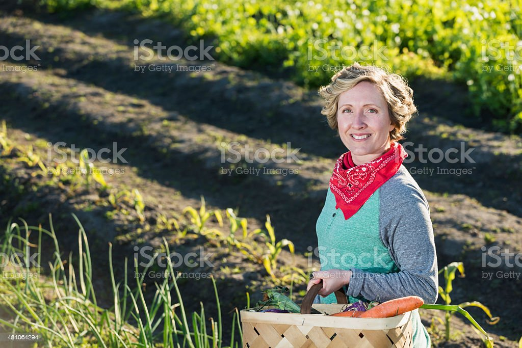 Woman on farm with basket of fresh vegetables stock photo