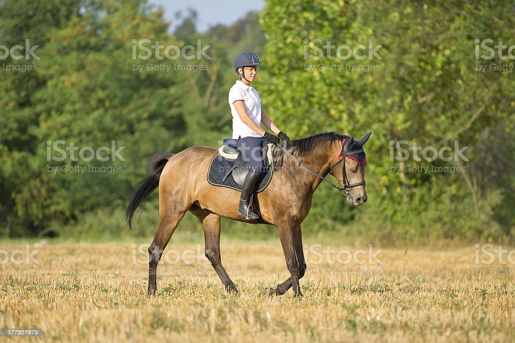 Woman on horseback stock photo