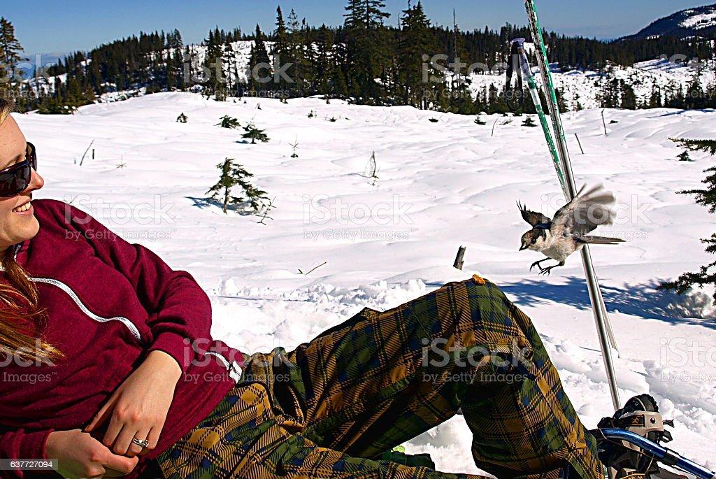Woman on Mount Washington with Whiskey Jack bird stock photo