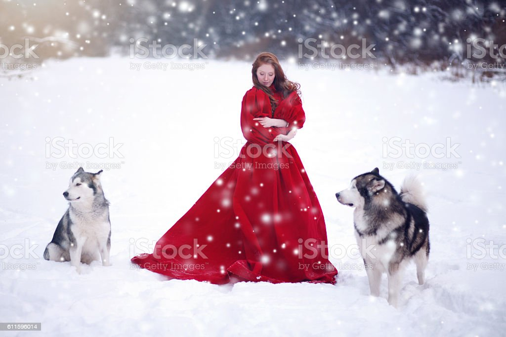 Woman on red dress with dogs stock photo
