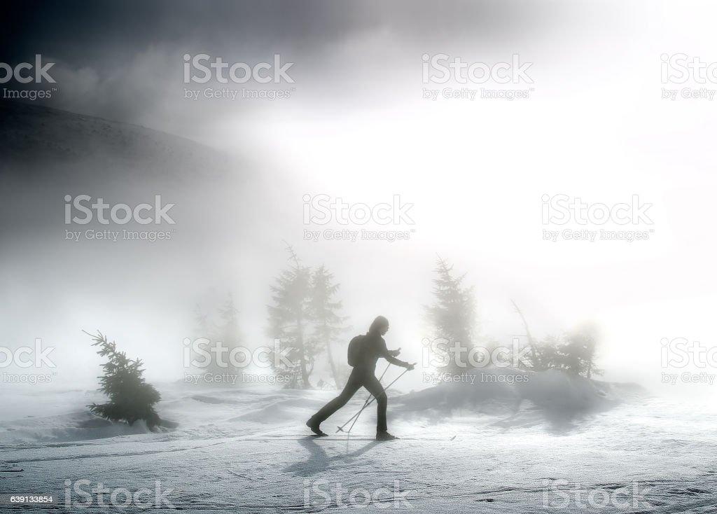 Woman on ski stock photo