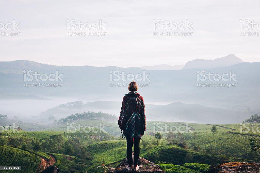 Woman on tea plantation in India stock photo