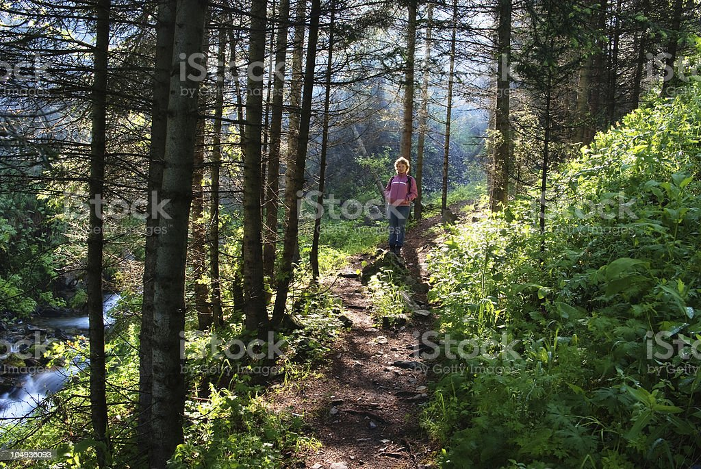 Woman on trail in woods royalty-free stock photo