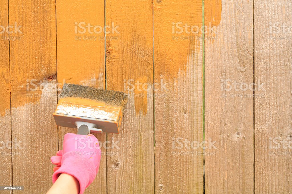 Woman painting a fence with wood stain treatment stock photo