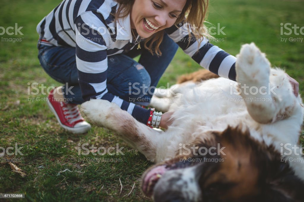 Woman petting a dog on a lawn stock photo