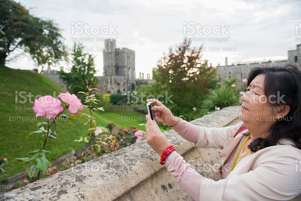 Woman Photographs Flower with Mobile Phone royalty-free stock photo