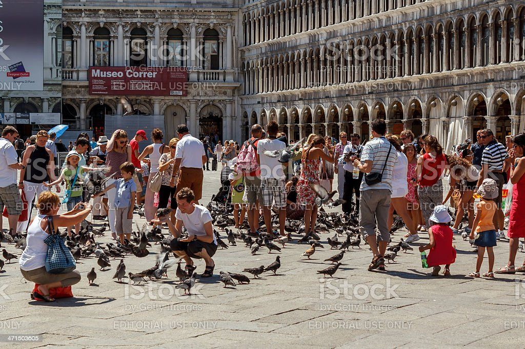 Woman photoshooting men with pigeons on St Mark's Square royalty-free stock photo