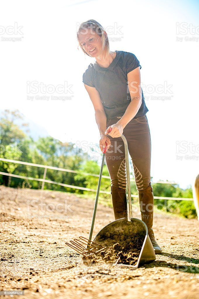 Woman Picking Up Horses Manure stock photo