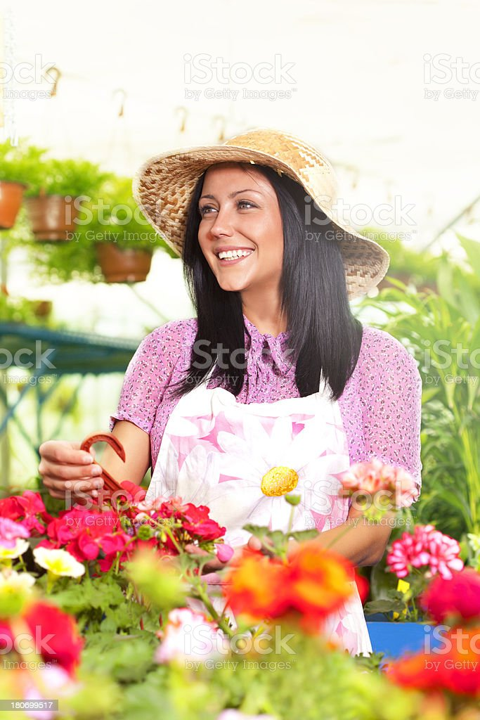 Woman Planting In a Garden royalty-free stock photo