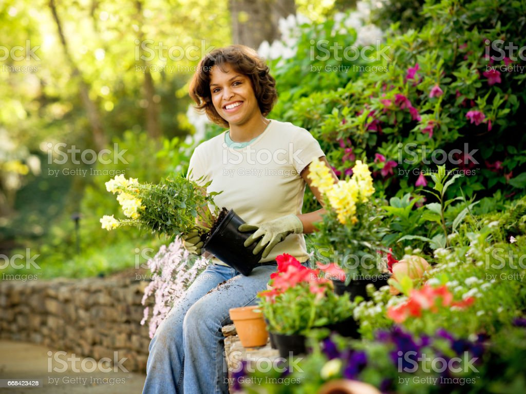 Woman Planting In a Garden stock photo