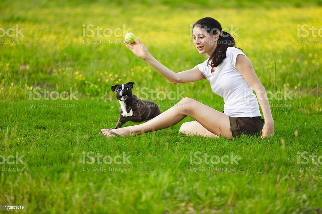 Woman Playing Fetch With Boston Terrier royalty-free stock photo