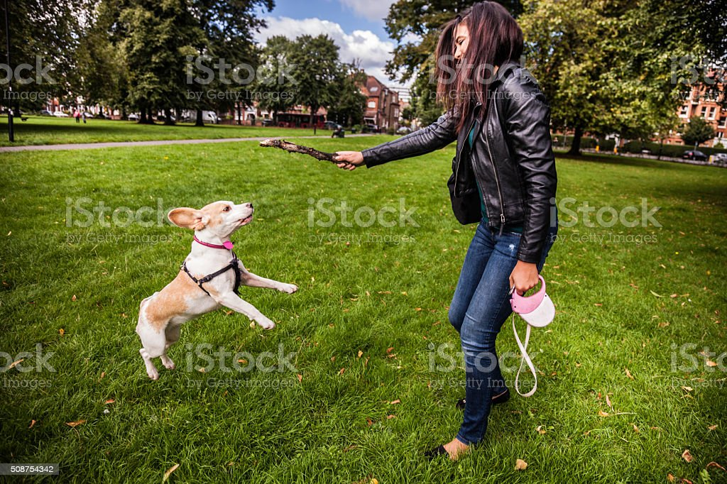 Woman playing with dog in a London park stock photo